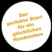 https://www.dogteam-leibnitz.at/wp-content/uploads/2021/02/welpen_sticker1-200x200.png
